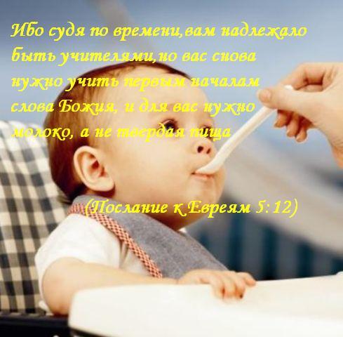 Пища для духа Ибо судя по времени,вам надлежало быть учителями,но вас снова нужно учить первым началам слова Божия, и для вас нужно молоко, а не твердая пища (Послание к Евреям 5:12)