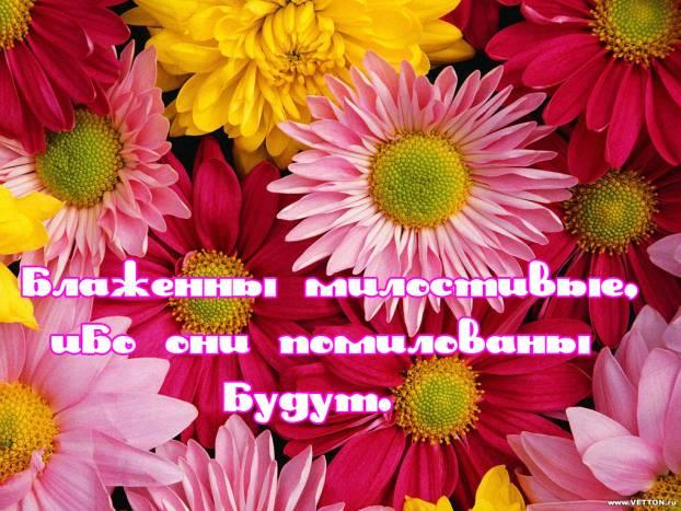 блаженны милостивые, ибо они помилованы будут