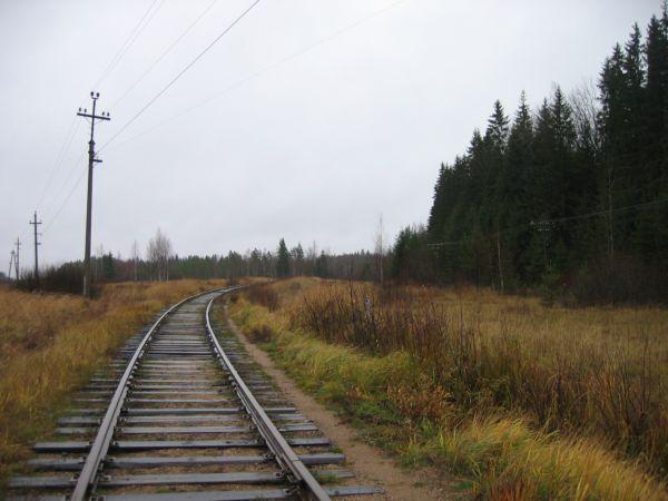 едет поезд в пути